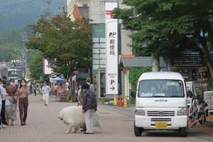 043_200917037 X800 旧軽井沢銀座通り G7X.jpg