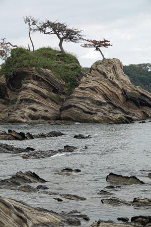 033_201014134 X800 荒崎海岸 RX10M4.jpg