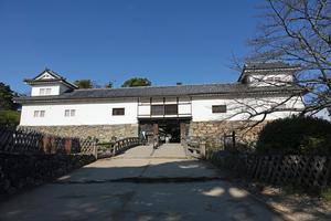 201126500_115 X800 〇彦根城 RX10M4.jpg