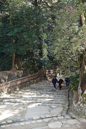 201126501_116 X800 〇彦根城 RX10M4.jpg