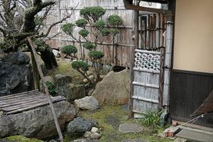 201126627_140 X800 彦根キャッスルロード きむらの庭 RX10M4.jpg