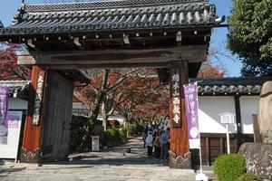 201127787_193 X800 西教寺 RX10M4.jpg
