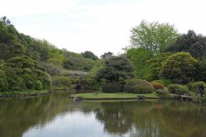029_210409161 X800 日本庭園 小石川植物園 RX10M4.jpg