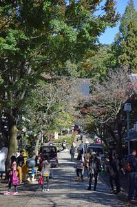 深大寺山門、本堂をのぞむ;クリックすると大きな写真になります。